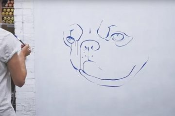 SketchAR: Aplicación para dibujo